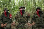 Capturan a guerrilleros del ELN en Colombia