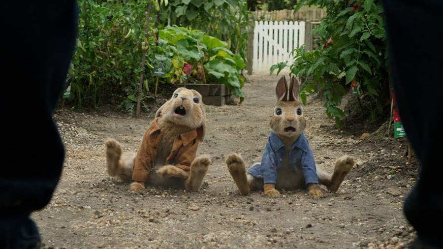 Película Peter Rabbit