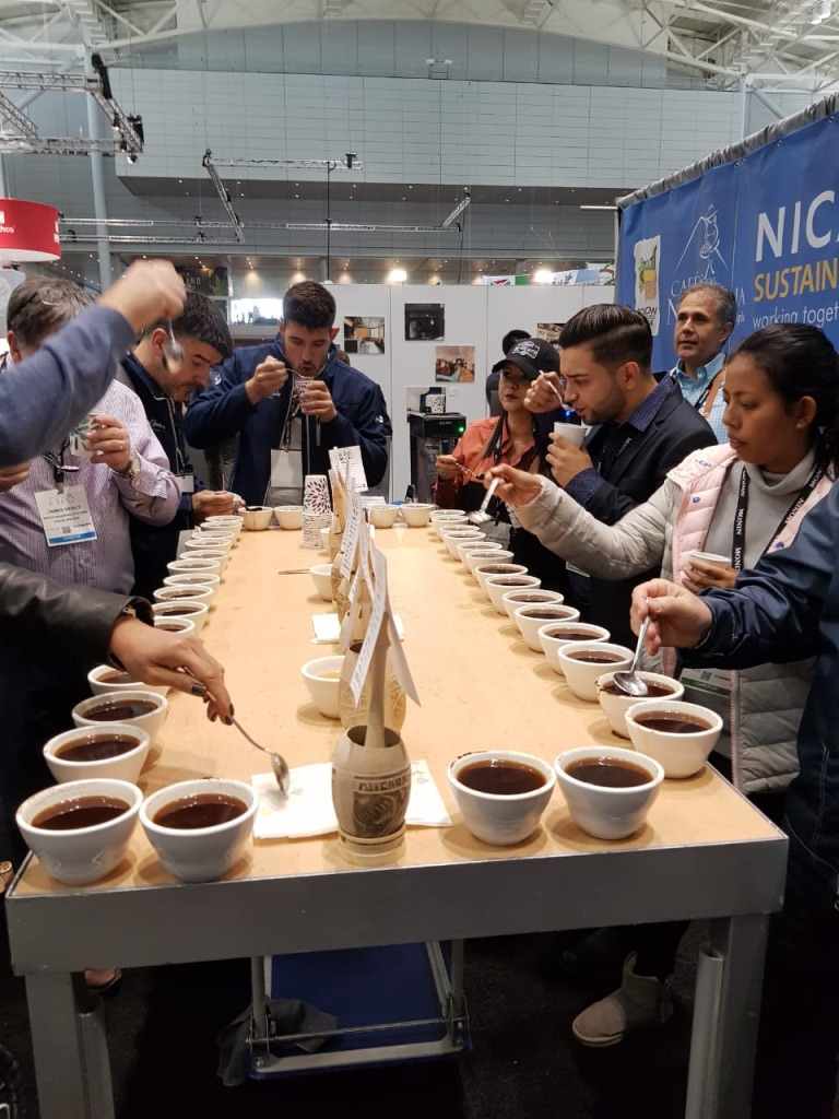 "Durante las cataciones de café en la feria ""Specialty Coffee Expo 2019"". Cortesía/END"