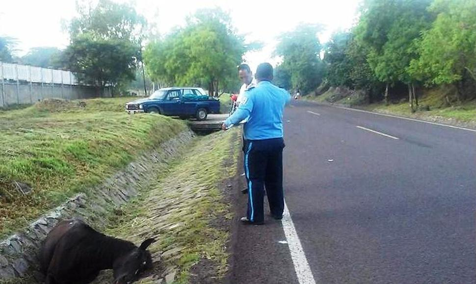 Lugar del accidente.