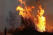 California de nuevo afectada por gigantesco incendio forestal