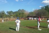 Pinturas Sur, patrocinador oficial de Perfect Game League
